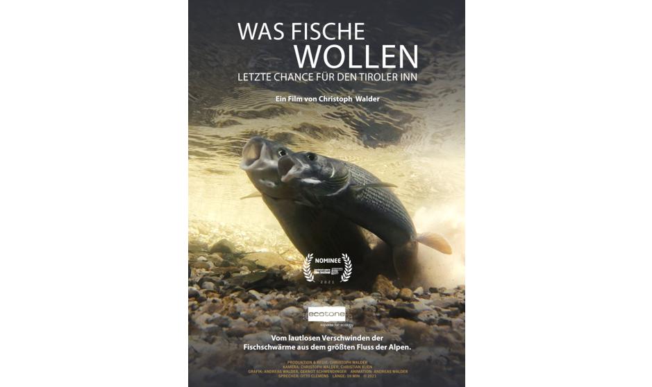Was Fische wollen, Christoph Walder